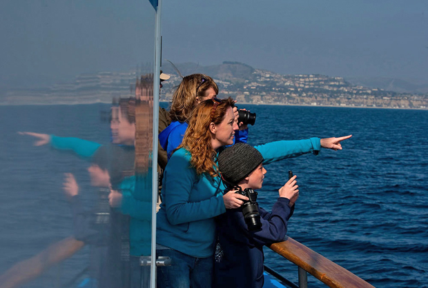 Image 1 for Dana Point becomes the first Whale Heritage Site in the U.S.