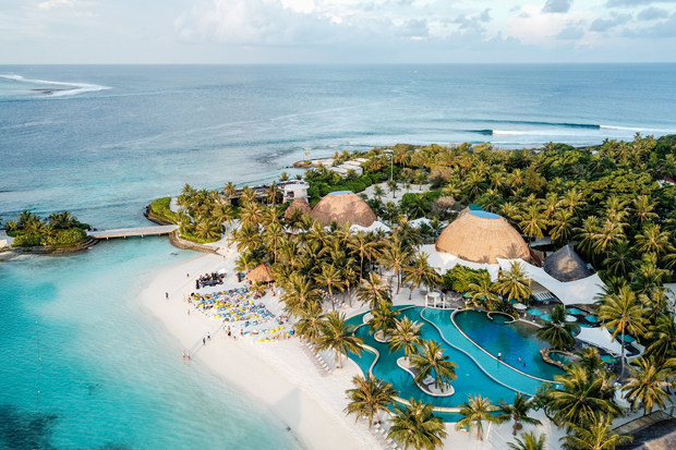 Image 1 for Hoodoo Gurus, Surf Music in Paradise - Maldives