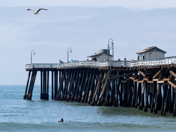 Image 1 for Why is human DNA seeping into the surf near a Southern California pier?