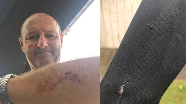 Image 2 for Kiwi surfer punches shark in eye during heavy encounter