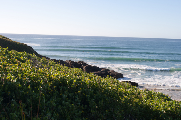 Image 4 for Surfer in his 20s dies after shark attack at Shellys