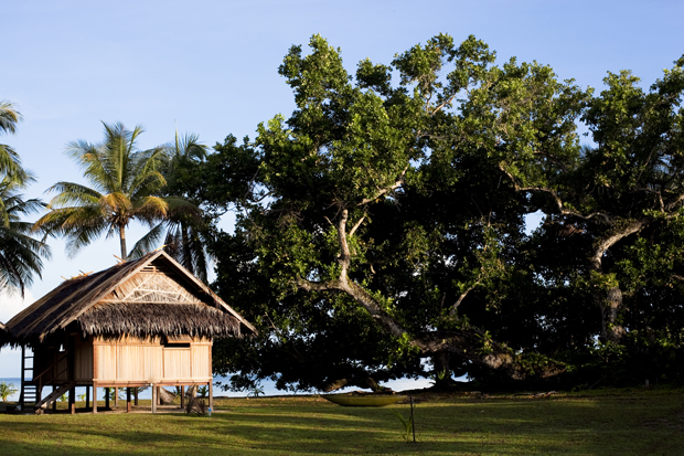 Image 5 for Vanimo Surf Lodge, Papua New Guinea – a win for all
