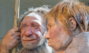 "Neanderthals got ""surfer's ear"" too, study says"